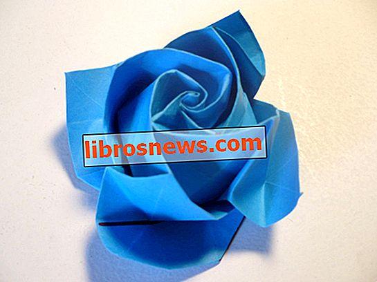 折り紙バラ満開
