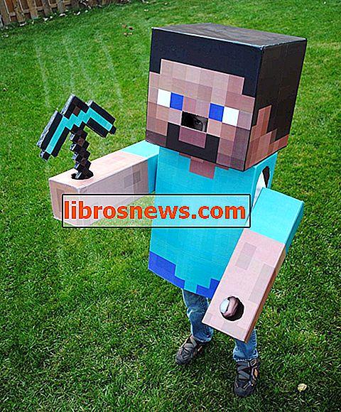 Minecraft Steve Kostümü