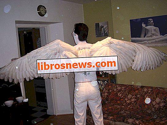 Bir çift melek kanatları nasıl yapılır