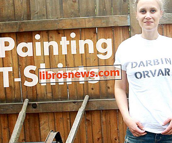 DIY Cara Cat T-shirt