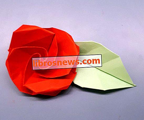 折り紙の花!