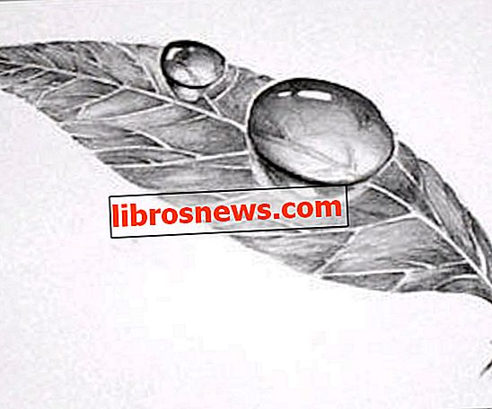 Easy 3D Art Pencil Drawing: Hoe 3D Dauw Drop on Leaf te tekenen