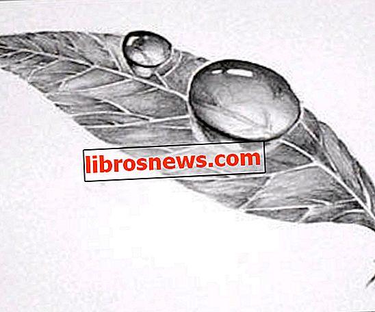 Easy 3D Art Pencil Drawing: Hoe 3D Dauw Drop on Leaf te tekenen