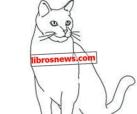 Bagaimana Draw a Cat