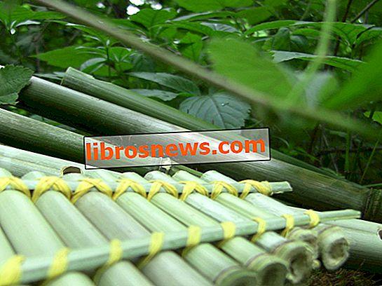 Machen Sie 4 einfache Bambusflöten kostenlos!