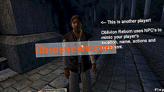 Installation von Oblivion Reborn (Oblivion Multiplayer Mod)