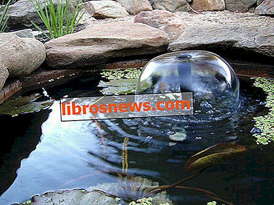 Cómo construir un estanque de peces o estanque de jardín