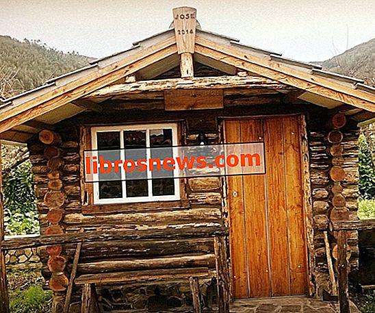 Langkah demi Langkah Pembangunan Log Cabin